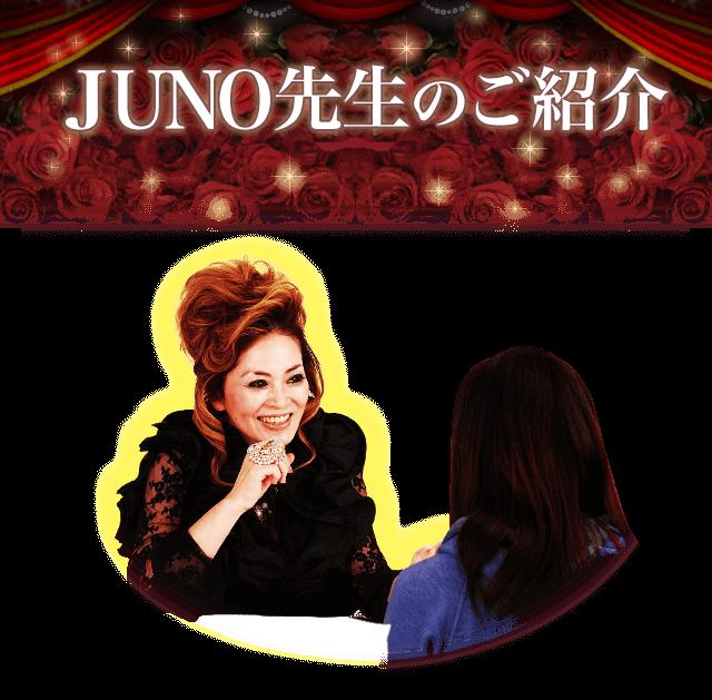 JUNO先生のご紹介