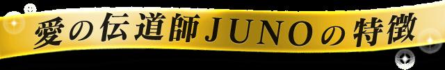 愛の伝道師JUNOの特徴